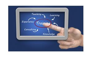 Training, teaching, experience, learning, consulting, knowledge, skills